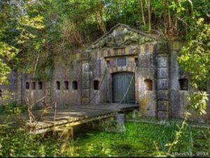 excursie-natuur-en-geschiedenis-fort-rhijnauwen158_M